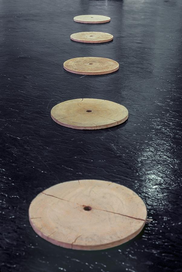 Five discs, 1981